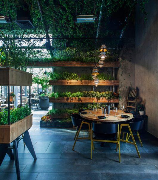 Segev Kitchen Garden 1