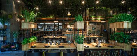 Segev Kitchen Garden 4